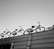 Bikes on a Roof  by HEELS