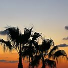 Sunset with palms... by Nuh Sarche