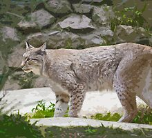 Stylized photo of a Siberian Lynx by NaturaLight
