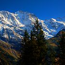 Alpine View -  Murren  IMG_6263 tm by David Hutcheson