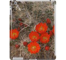 Red Cactus Flowers iPad Case/Skin