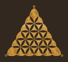 Flower Of Llife, Sacred Geometry, Crop Circle, Triangle by nitty-gritty