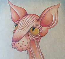 Right Side Up Sphynx by drawnbylex