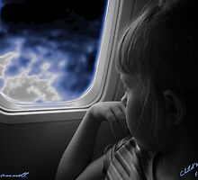 Child's First Flight by Tiffany  Trammell