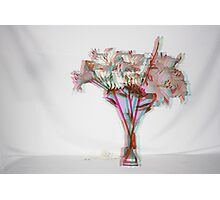 3D lilys Photographic Print