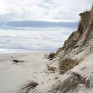 dunes at Ocean Beach, Tasmania by gaylene