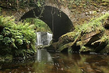 Torc Waterfall bridge by John Quinn