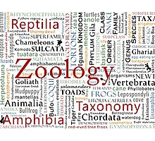 Herpetology in Taxonomy in Typography Cloud Photographic Print