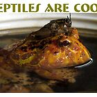 Reptiles are Cool by www4gsus