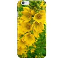 Small Yellow flowers 2 iPhone Case/Skin