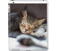 Brotherly Love iPad Case/Skin