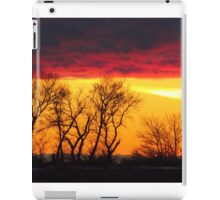 Grace For Today and Bright Hope For Tomorrow iPad Case/Skin