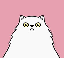 Angry White Persian Kitty Cat by zoel