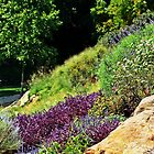 The Coleus Garden by DeeZ (D L Honeycutt)