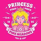 Princess Power Card by stationjack
