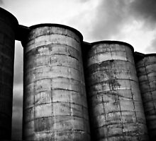 Cement Stores, Maria Island by Kelly McGill