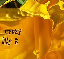 CRAZY LILY 3 by Michelle BarlondSmith