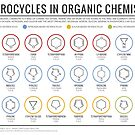 Heterocycles in Organic Chemistry by Compound Interest