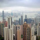 Hong Kong Skyline by Robert Scammell