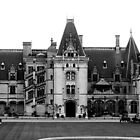 Biltmore House by DeeZ (D L Honeycutt)