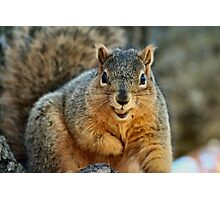 I Don't want to smile too wide...I'll drop my nut! Photographic Print