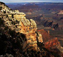 Grand Canyon Vista No. 7 by Benjamin Padgett