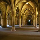 Cloisters by Susan Dailey