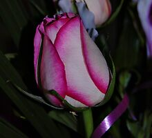 FOR YOU! by Cheryl Hall