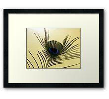 The Peacock Dude! #4 Framed Print