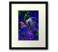 Butterfly Blues Framed Print
