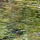 Corbitt's Glen - The Water by Laura Jean Taft
