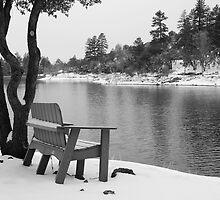 Winter Bench by odspouse