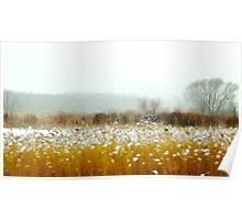 Winter Prairie by Alma Lee Poster