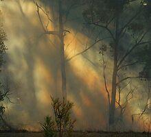 """""""Through the Smoke"""" by debsphotos"""