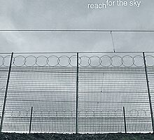 Reach for the Sky by Rachel Taylor