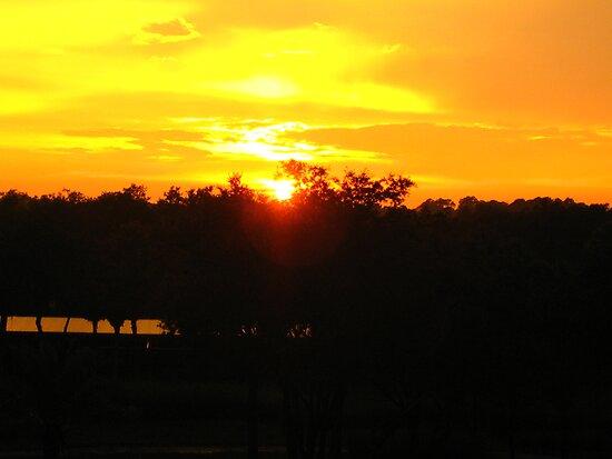Disney Animal Kingdom Lodge - Balcony Sunset by Richard Durrant