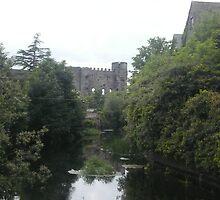Carlow Castle 2 by pablotguerrero