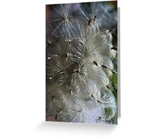 Wild flowers from Lithuania Greeting Card