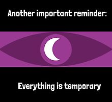 Everything is temporary by Rivers Turow