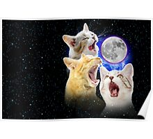 Exclusive Three Cat Moon Design! Poster