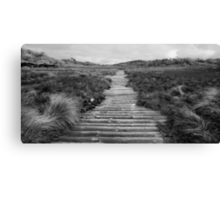 Board walk on the back of a buffalo Canvas Print