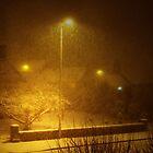 SNOW STORM by leonie7