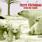 MERRY CHRISTMAS ~ FROM OUR FAMILY by Madeline M  Allen