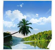picturesque palm tree leans over the tropical river in the early hours Poster