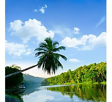 picturesque palm tree leans over the tropical river in the early hours Photographic Print