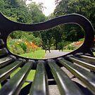 Bench by Paul Finnegan