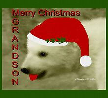 MERRY CHRISTMAS ~ GRANDSON by Madeline M  Allen