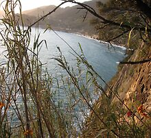 Le Cinque Terre, Liguria by Kymbo