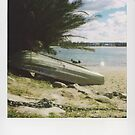 shelly beach by PhilipDickenson