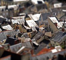 Patchwork French Roofs... by hazy